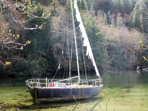 Le nord de l'île de Vancouver